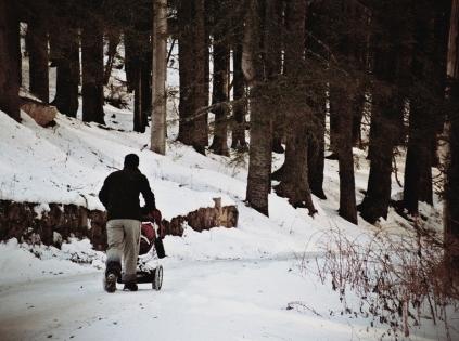 carucior copii iarna