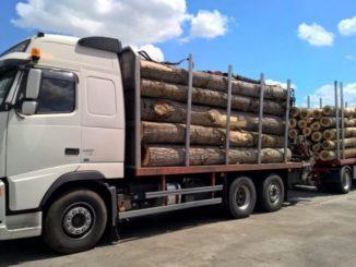 permis camion drpciv